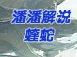 4399生死狙击潘潘武器解说:蝰蛇