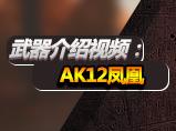 4399生死狙击武器介绍:AK12凤凰