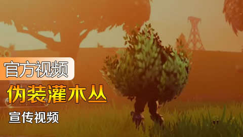 官方视频:伪装灌木丛视频
