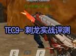 火线精英军子-评测TEC9刺龙打挑战