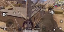 绝地求生刺激战场圣马丁上树技巧视频