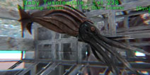 方舟生物介绍第21期:托斯特巨鱿 【黑斑瞪羚】视频