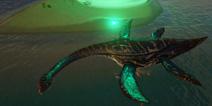 深入海洋捕捉蛇颈龙 【世界的猫精灵】视频