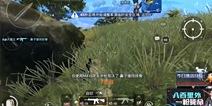 和平精英8gk化身为伏地能手 雨林图精彩击杀5人视频